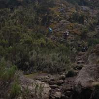 Kilimanjaro Trek Up
