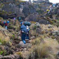 Straight Up Kilimanjaro