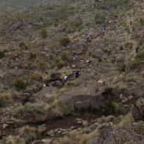 Another Shot Of the Long Trek Up Kilimanjaro