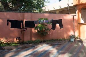 Arusha Drying Rack