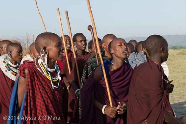 Maasai Welcome Dance- Alyssa O'Mara