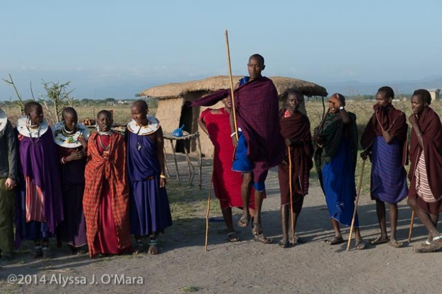 Maasai Welcome Dancer Jumping- Alyssa O'Mara